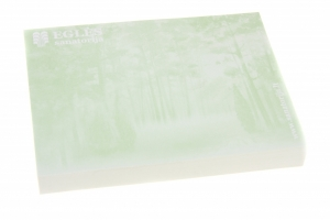 Lipnūs lapeliai užrašams 100x75 mm